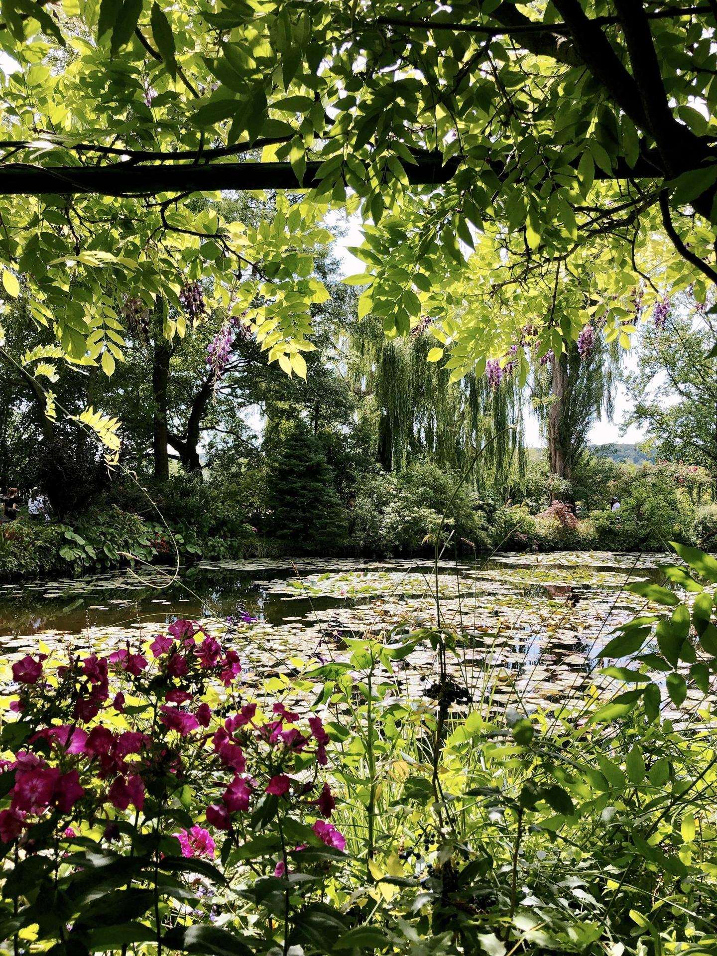 Landscape in Giverny