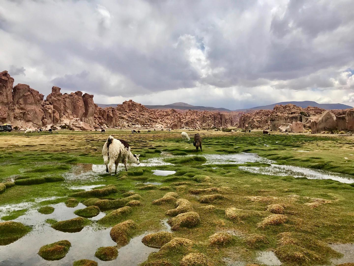 Photo of landscape in Bolivia